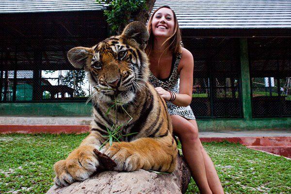 semplice-tiger-kingdom-phuket-9-600x400